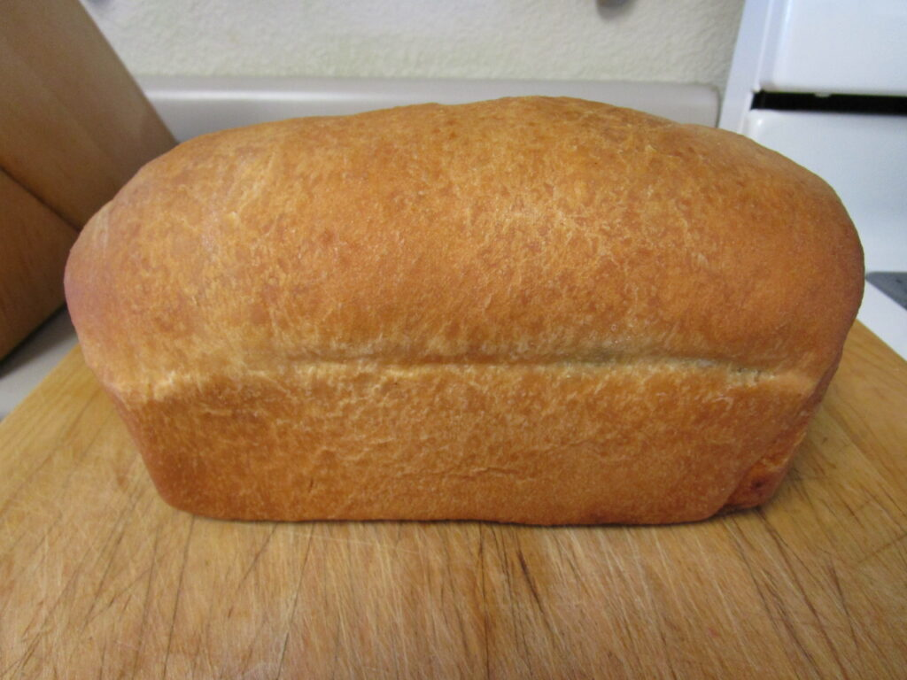 April's Basic Bread Recipe with Variations - The Chicken ...